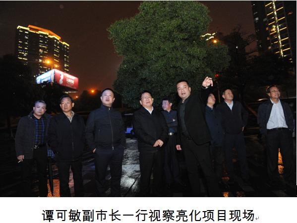 """谭可敏副市长一行视察""""一江两岸""""一期亮化等项目"""
